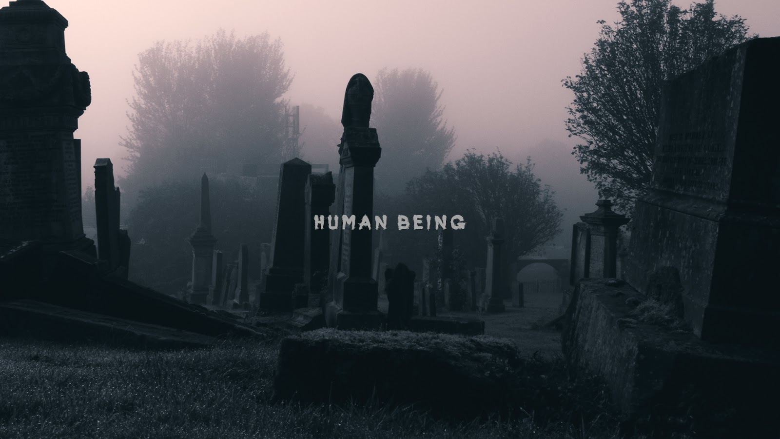 Human Being (Official Trailer)
