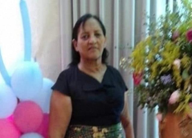 Em Oeiras, idosa morre após ataque de abelhas na zona rural