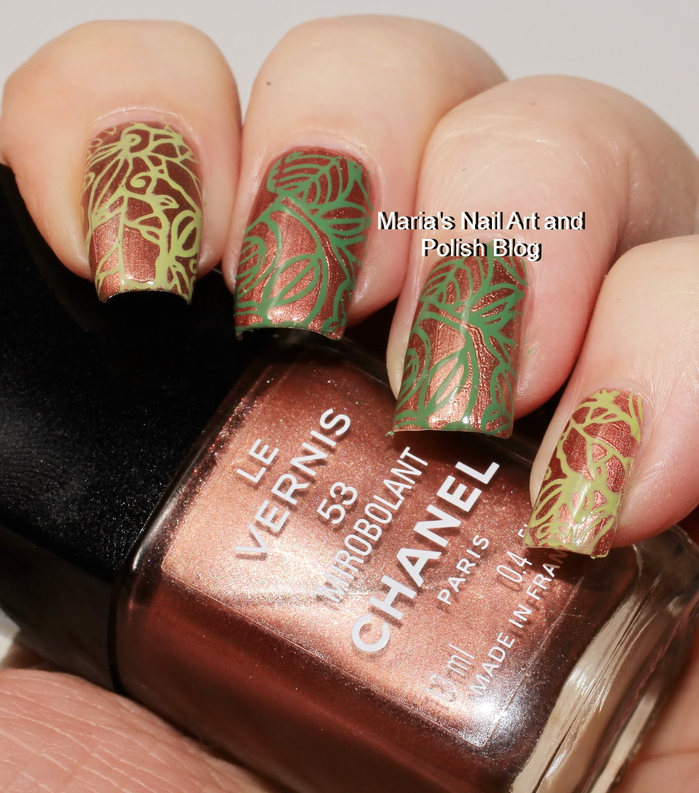 Marias Nail Art And Polish Blog Ejiubas Stamping Plates Review