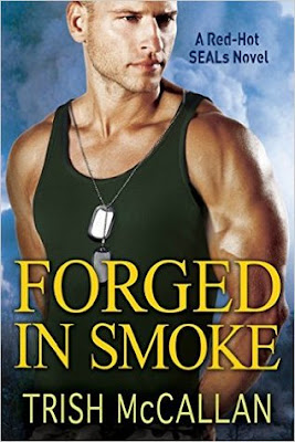 Bea's Book Nook, Review, Forged in Smoke, Trish McCallan