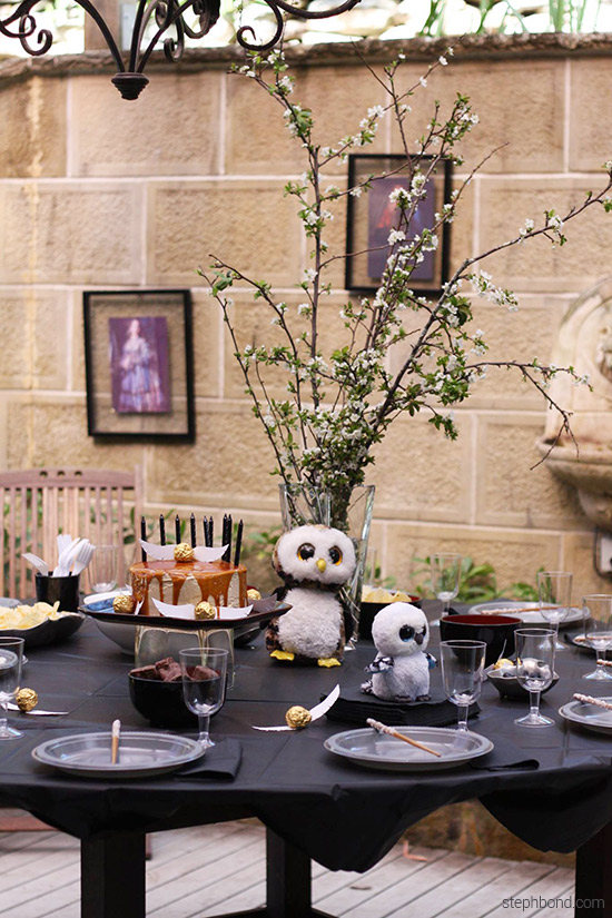 Table setting and decorations for Harry Potter birthday party