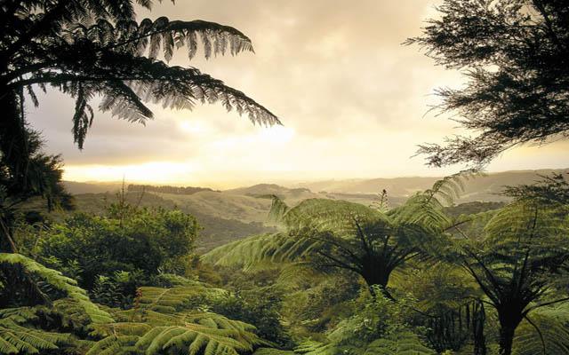Происходит охлаждение атмосферы над тропиками