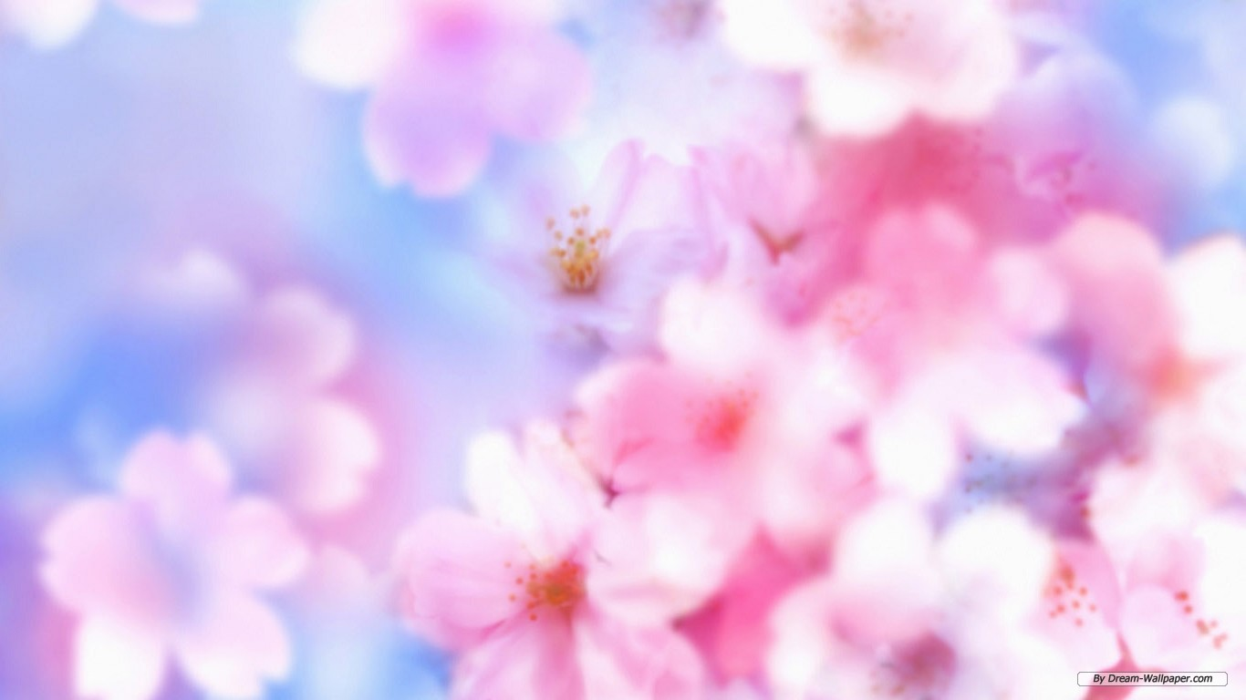 flower background images
