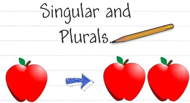 Lesson Plan Of Plurals English Grade 3