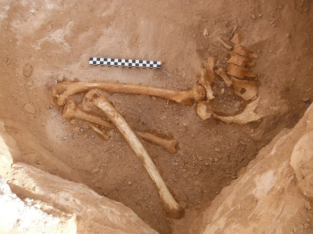 Israeli archaeologists unearth pregnant woman's remains at ancient copper mines