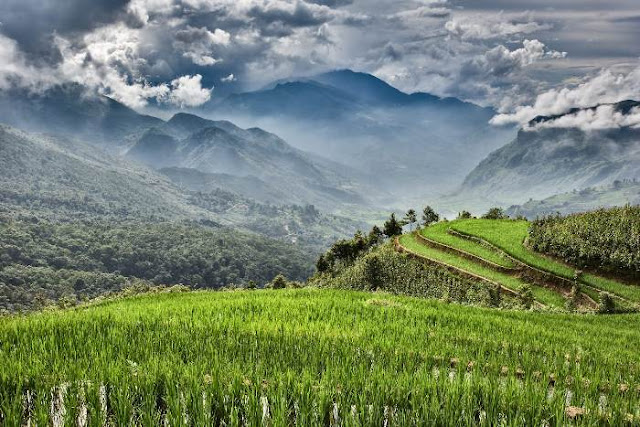 Travel to Vietnam if you are looking for rural adventures