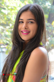 Telugu Actress Prasanna Stills in Short Dress at Inkenti Nuvve Cheppu Press Meet Stills  0004.JPG