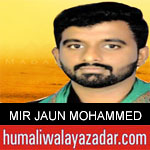 https://www.humaliwalyazadar.com/2018/10/mir-jaun-mohammed-nohay-2019.html