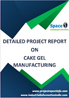Cake Gel Manufacturing Project Report