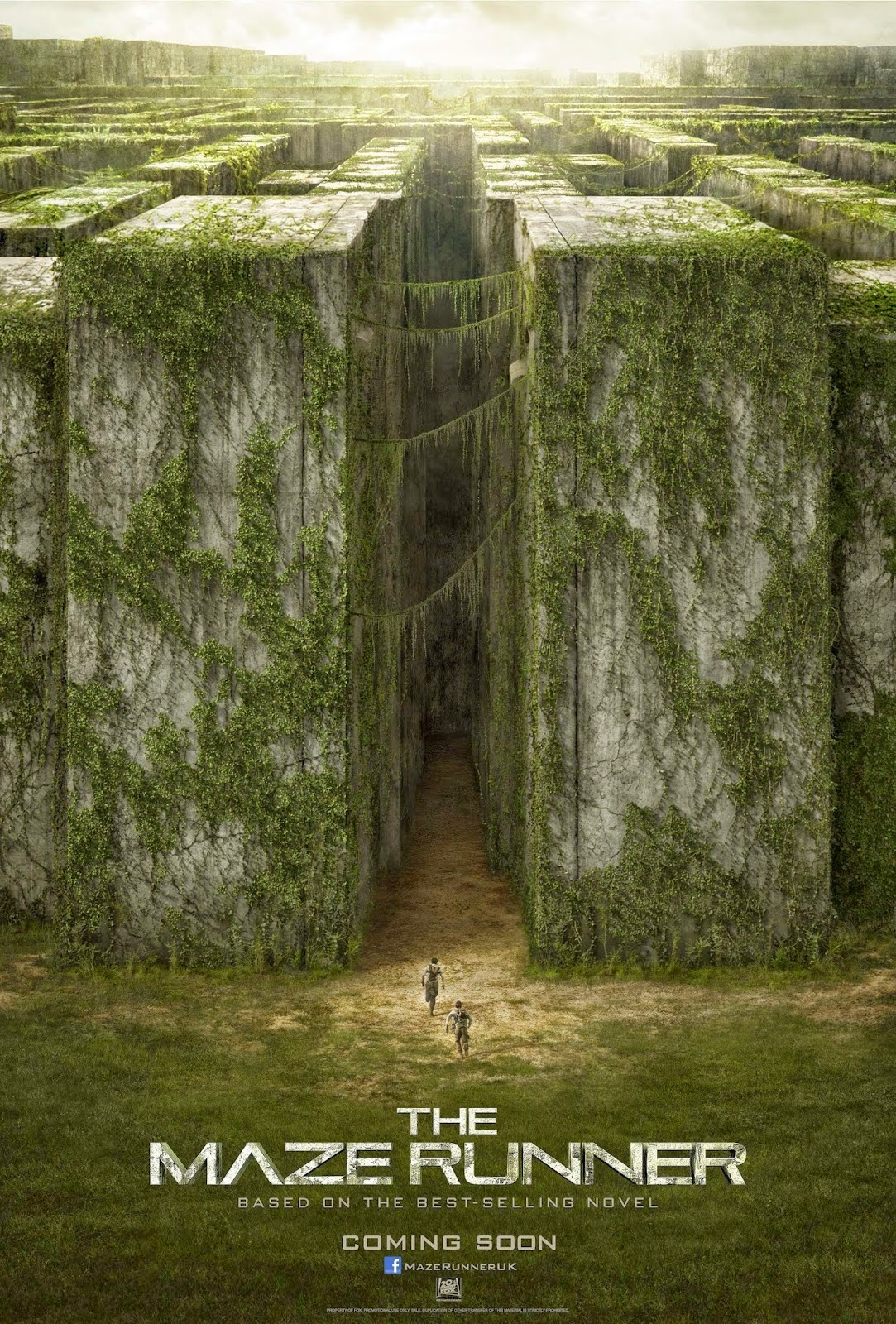 RATH'S REVIEWS: The Maze Runner