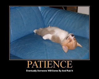 3366863-patience.jpg