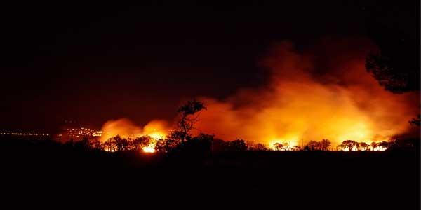 Ancaman Terhadap Pelaku Pembakaran Hutan, dari Aspek Hukum yang Awam berlaku di Indonesia