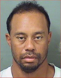 DUI, Tiger Woods, Golf, Sports, Celebrity,