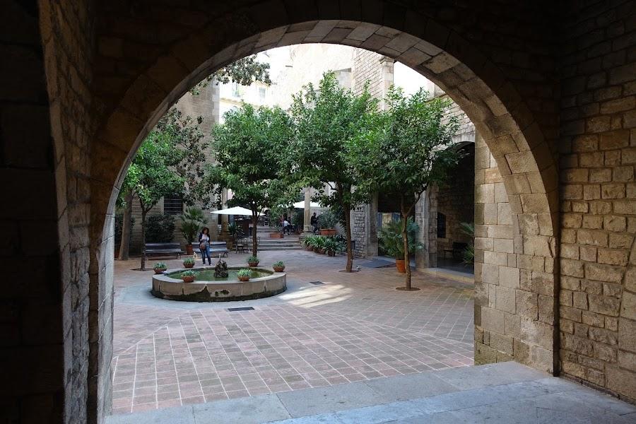 フレデリック・マレー美術館(Museu Frederic Marès) の中庭