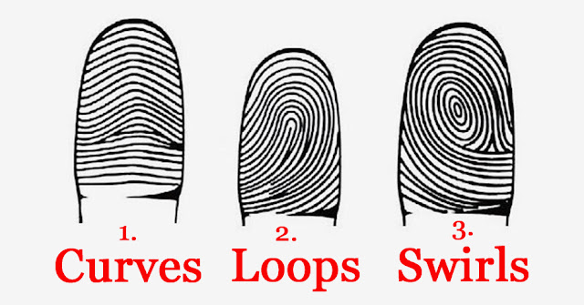 Here's What Your Fingerprints Reveal About Your Personality!