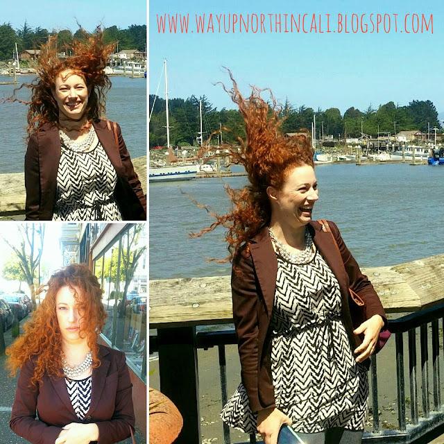 www.wayupnorthincali.blogspot.com