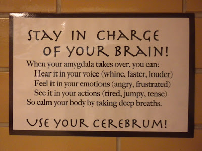 Stay In Charge of Your Brain