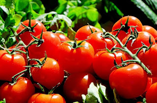 Top, Begini Cara Menghilangkan Jerawat Menggunakan Tomat