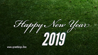 Different colour 2019 font Happy New Year greetings
