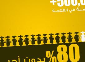 http://www.tunelyz.com/2016/05/femmes-emploi-agriculture-tunisie.html