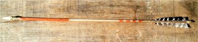 """flecha de supervivencia"""