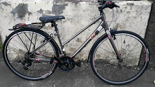 Stolen Bicycle - Giant Alight Liv