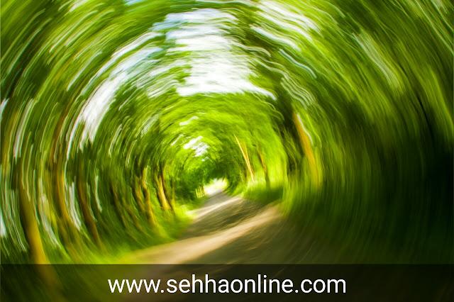 دوخة، اسباب الدوخة، اسباب الدوخة المستمرة، Dizziness, Causes of dizziness, Causes of persistent dizziness,