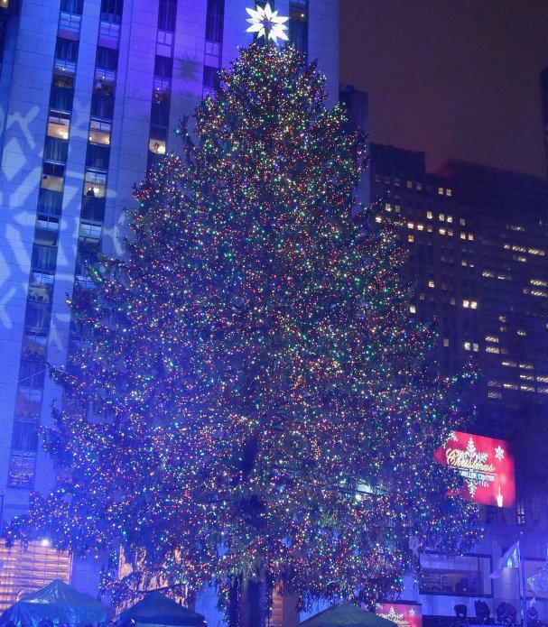 Ugly Christmas Tree.Montreal Simon The Moral Of The Ugly Christmas Tree