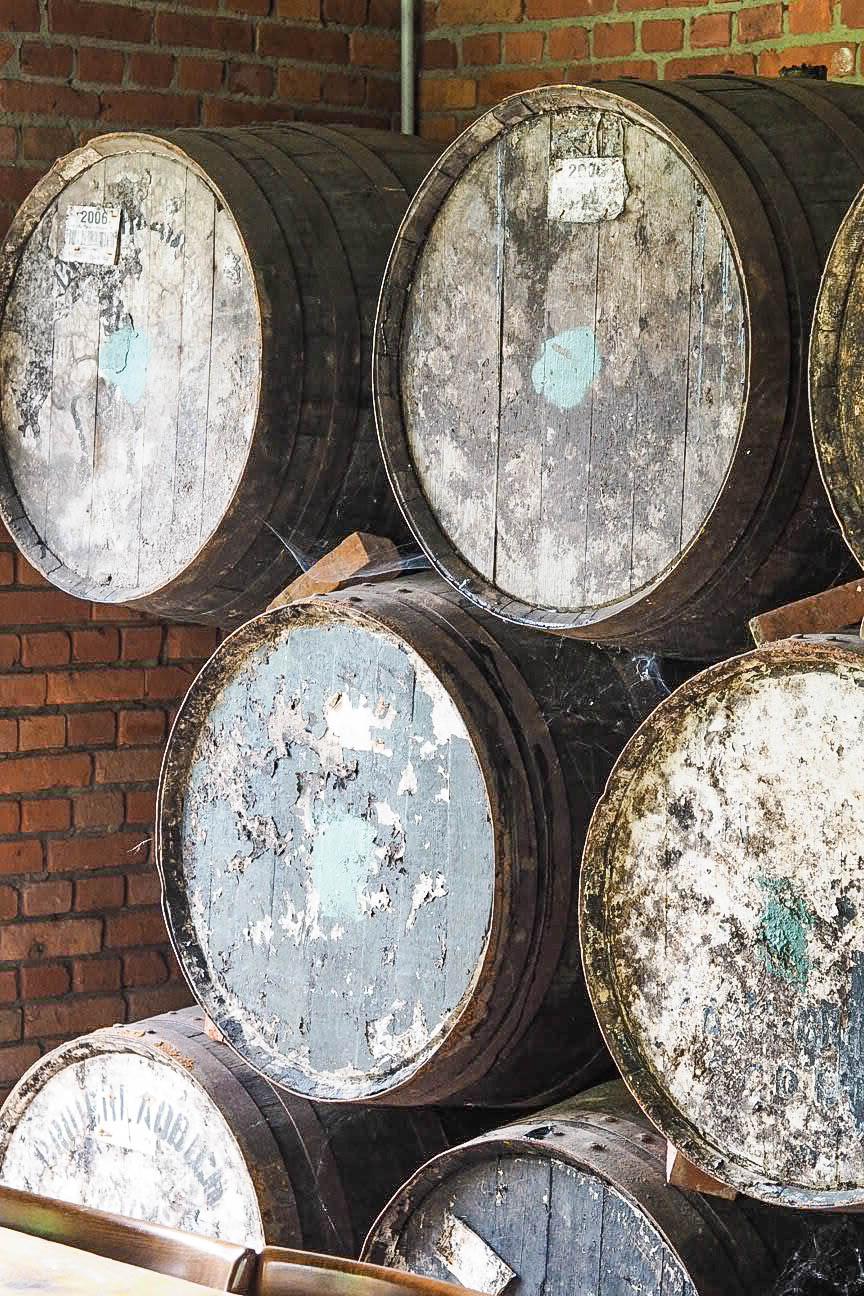 Beer brewery barrels