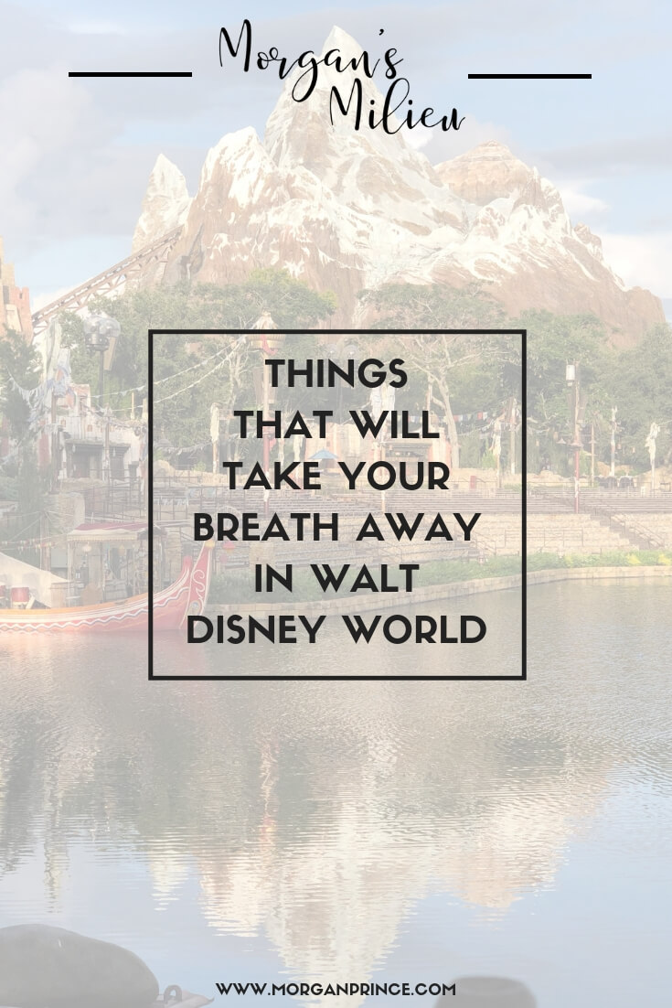Things That Will Take Your Breath Away In Walt Disney World | There are so many amazing things to see, here's just a few of them you'll love.