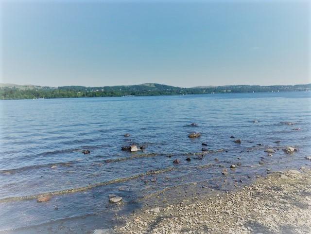 Shore of a lake