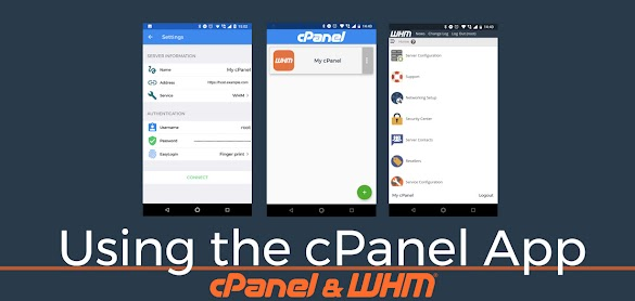 Definitions of Guide Cpanel Web Hosting