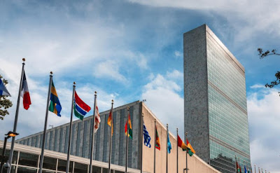 UN disability committee: Abortion 'prerequisite' for 'safeguarding women's human rights'