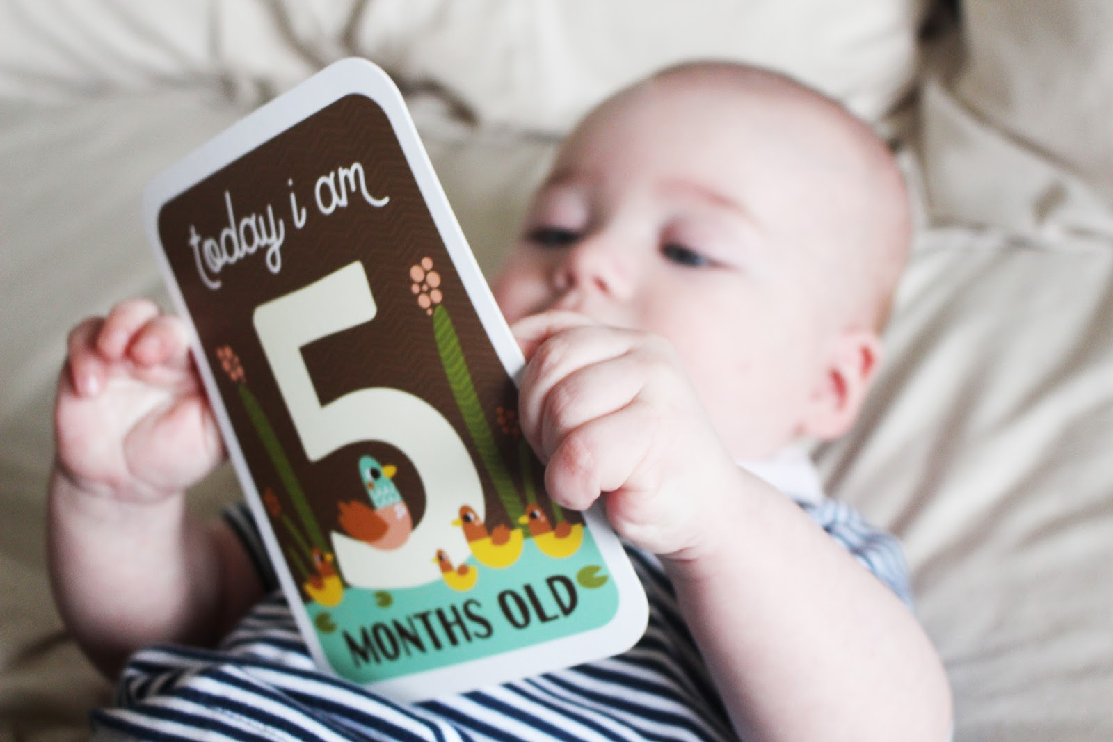 Baby 5 Month Update Life With Boys