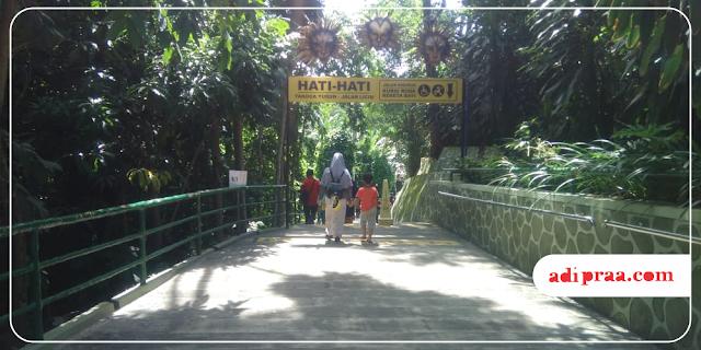 Siap jalan-jalan di Gembira Loka Zoo | adipraa.com