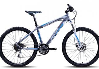 gambar Harga Spesifikasi Sepeda Polygon Xtrada 4