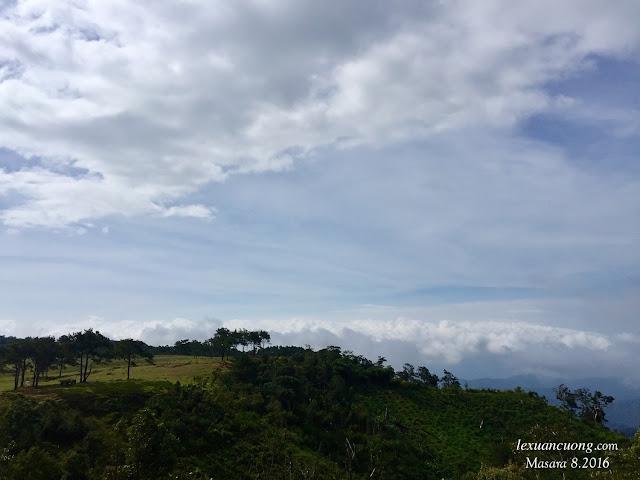 Masara hôm nay mây không quá dày, nhưng cũng đủ là náo nức lòng người.