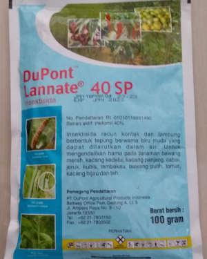 Insektisida Dupont Lannate 40 SP