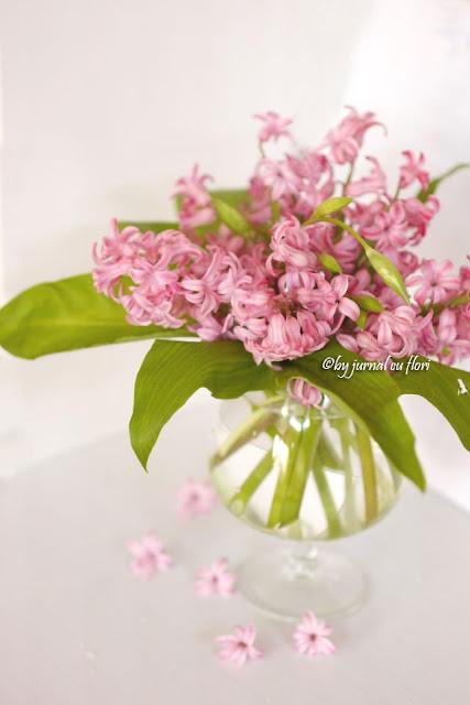 poza foto imagine aranjament de primavara cu zambile roz
