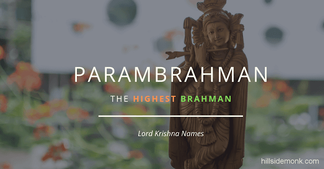 Lord Krishna Names With Meaning 7