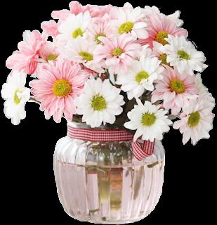 Vaso de crisântemo rosa branco