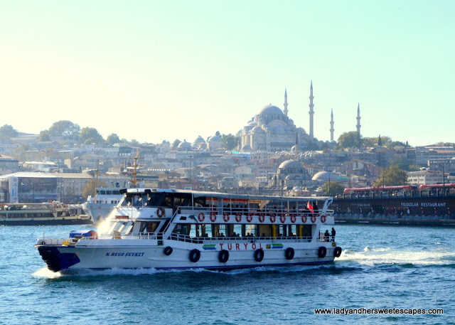 the Old City's picturesque skyline Istanbul Turkey