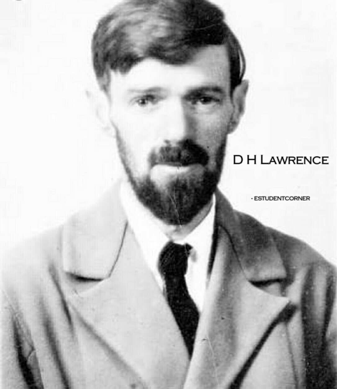 D H Lawrence Short Biography Wiki,Novels,Works,Short Summary Of Sons And Lovers, Meaning of the Term Oedipus Complex