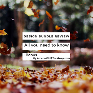 design bundle review