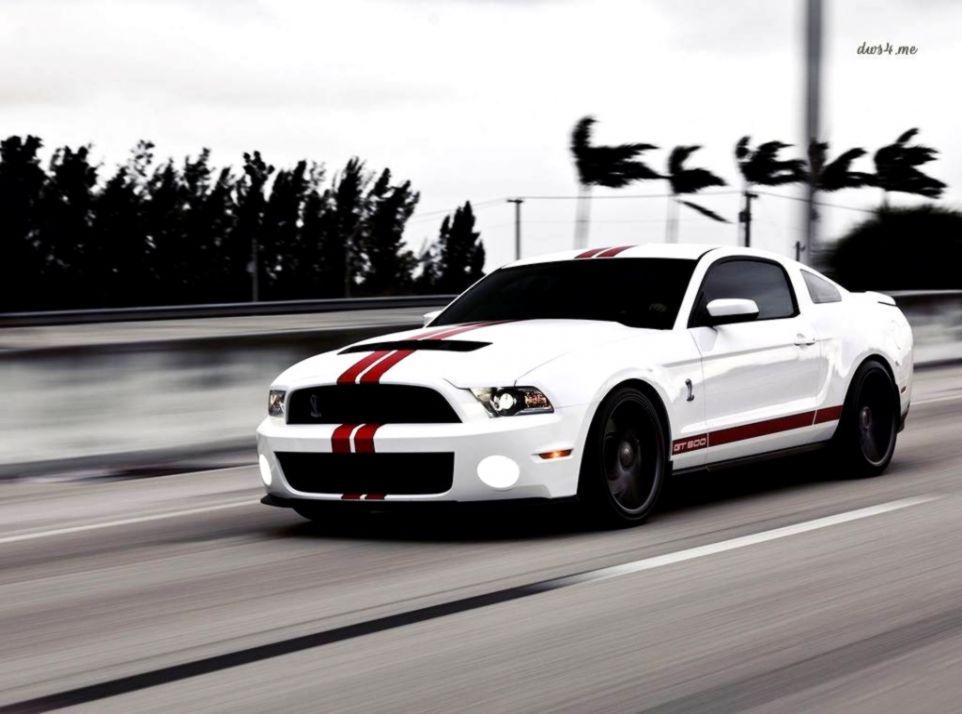 White Mustang Cars Wallpaper Genius Wallpapers