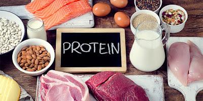 Manfaat Protein Untuk Kesehatan Tubuh Kita