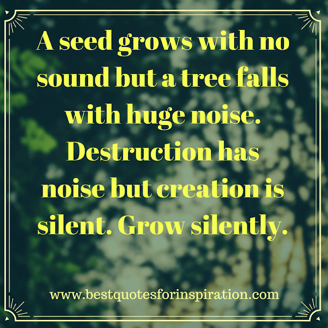 A seed grows with no sound but a tree falls with huge noise.Destruction has noise but creation is silent. Grow silently. - top positive quotes 2017