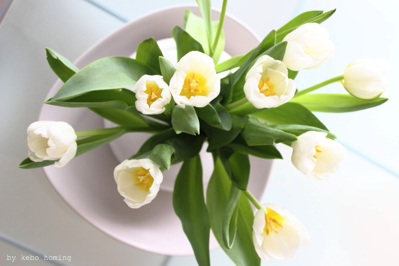 Blumen am Freitag, weiße Tulpen, friday flowerday, tulips in white beim Südtiroler Food- und Lifestyleblog kebo homing, flower photography