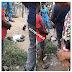 SHOCKING!!! Police Reject Abandoned Baby In Ogun State(Photos)