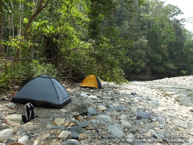 Camping and riverwalk in Tambrauw mountains